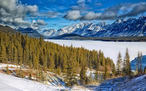 Kananaskis Lower Lake, lago, inverno, Montagne, alberi, paesaggio