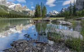 Maligne Lake, Parco nazionale Jasper, lago, Montagne, alberi, paesaggio