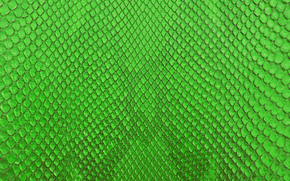 TEXTURE, Texture, skin, background, Design backgrounds, Snake skin