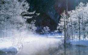 winter, nature, trees, snow, landscape, pond, steam