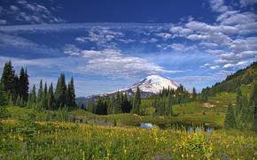 Mount Rainier National Park, Montagne, lago, alberi, paesaggio