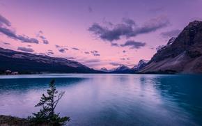 Bow Lake, Banff National Park, озеро, горы, пейзаж