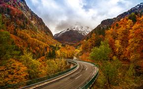 autunno, Montagne, stradale, alberi, paesaggio
