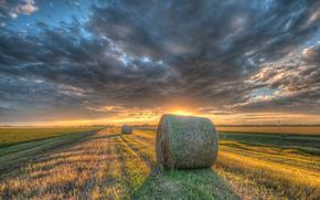 sunset, field, hay, landscape