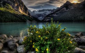 lago, Montagne, alberi, paesaggio