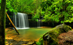 forest, river, waterfall, Rocks, trees, landscape