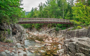 Albany, New Hampshire, río, bosque, Jost, árboles, paisaje