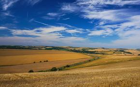 близ Брайтона, поле, небо, пейзаж