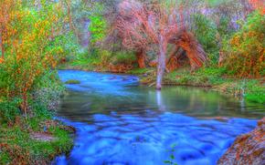 река, деревья, природа
