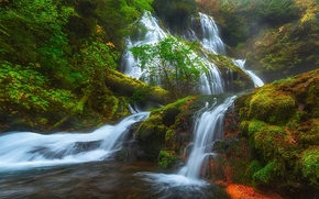 Panther Creek Falls, Columbia River Gorge, Skamania, Washington, Columbia River Gorge, Skamania County, Washington, cascade, cascade, forêt, mousse