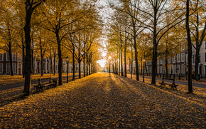 Гаага, Осень, Нидерланды