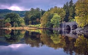 lago, autunno, ponte, alberi, paesaggio