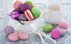sweet, sweets, dessert, cookies, crockery, food