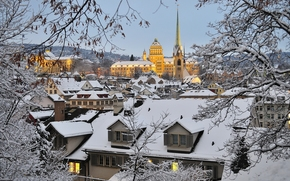 Zurich, Switzerland, Zurich, Switzerland, winter, snow, home, building, Roof, BRANCH
