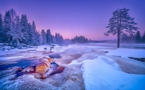Kiiminkijoki River, Finland, river Kiiminkiyoki, Finland, winter, snow, river, trees