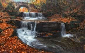 Bulgaria, Болгария, водопад, каскад, река, мост, осень, листья