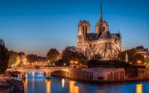 Cattedrale di Notre Dame, Notre-Dame de Paris, Parigi, Francia, Parigi, Francia