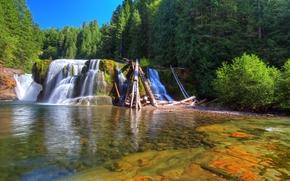 Lower Lewis River Falls, Lewis River, Washington, река, лес, деревья, пейзаж