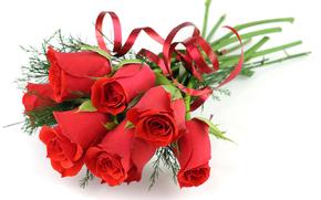роза, розы, цветок, цветы, красные, композиция, букет, белый фон, для поздравлений