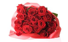 rosa, Roses, fiore, Fiori, rosso, COMPOSIZIONE, bouquet, sfondo bianco