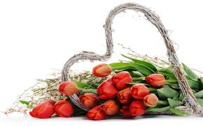 holiday, Valentine, heart, TULIPS, Flowers