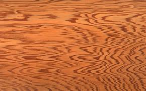 STRUTTURA, Consistenza, albero, sfondo, Progettazione sfondi, struttura di legno