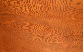 TEXTURE, Texture, tree, background, Design backgrounds, wood texture