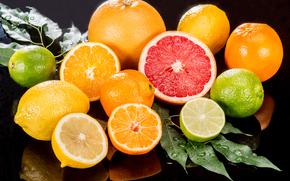 フルーツ, オレンジ, レモン, 柑橘類, グレープフルーツ