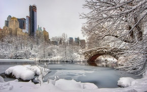 New York, pond, winter, bridge, trees, landscape