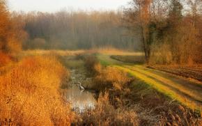 puesta del sol, campo, carretera, otoño, estanque, paisaje