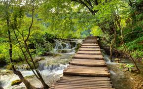 Parque Nacional de Plitvice, Croácia, ponte, piso de madeira, cachoeira, cascata, árvores, paisagem