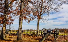 Gettysburg, field, trees, Guns, autumn, landscape