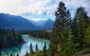 Bow River Banff, rivière, Montagnes, arbres, coucher du soleil, paysage