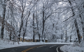 winter, road, home, trees, landscape