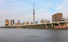 Tokyo, токио, япония