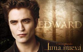 Twilight. Saga. Novilunio, Novilunio, film, film