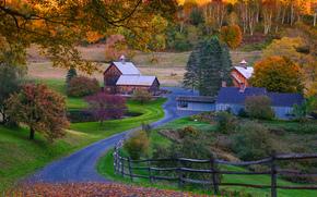 Vermont, autumn, road, trees, home, landscape