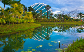 сингапур, парк, водоём, пальмы, пейзаж
