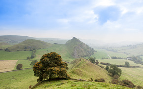 горы, холмы, дерево, природа, пейзаж