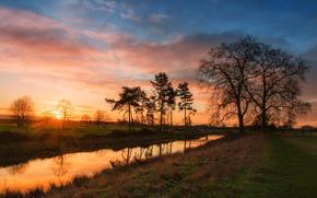 tramonto, fiume, alberi, paesaggio