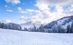 invierno, Montañas, árboles, casa, paisaje