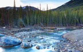 rzeka, drzew, kamienie, Góry, krajobraz