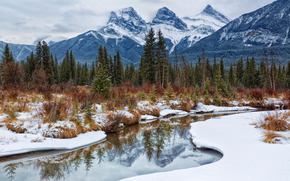 Canmore, Alberta, river, Mountains, trees, landscape
