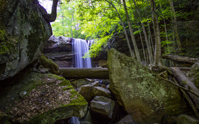 Cucumber Falls, Ohiopyle State Park, forest, waterfall, Rocks, trees, nature