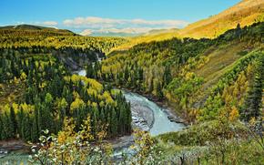 rio, Montanhas, outono, árvores, paisagem