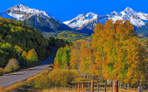 road, Mountains, trees, landscape, Colorado