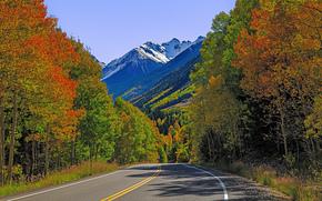 дорога, осень, горы, деревья, пейзаж, Колорадо