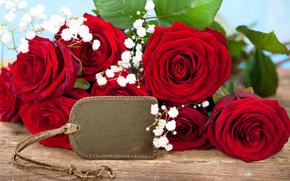 розы, гипсофила, бутоны, букет