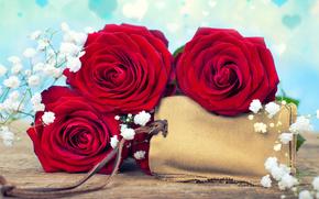 розы, гипсофила, бутоны