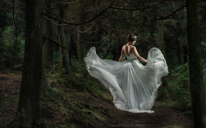 Asian, bride, Wedding Dress, dress, forest